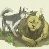 犬「やべえwwwwwwなにあいつwwww」ライオン「……」