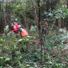 『6月14日(日) 森林づくり活動』の画像
