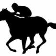 【競馬】長年競馬やってて生涯の収支がプラスの人っているの?