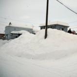 『毎日、窓の外の積雪に一喜一憂する日々。』の画像