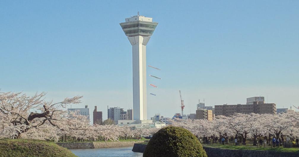 NPO法人ケアマネジャーネットワーク函館(けあまねっと函館) イメージ画像