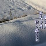 『寒天の朝』の画像