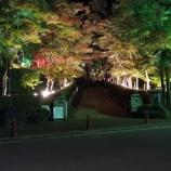 『夜の松雲山荘へ』の画像