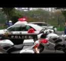パトカーなど少なくとも23台に衝突し逃走を図り、警察官が車の窓ガラスを割り逮捕したもの。  新潟市
