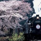 『大井川鐵道「お花見 夜桜SL列車」を2018年3月31日に運行します』の画像