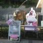 金沢動物園『あーりんとのコラボイベントが出来て本当に良かった...