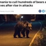 『ルーマニアでヒグマとオオカミの駆除計画』の画像