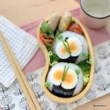 『ゆで卵のちょうちょのお弁当』の画像