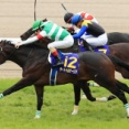 【神戸新聞杯】サートゥルナーリアとヴェロックスの馬連という10年に1度の特別還元祭