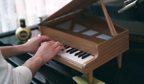 日本人ピアニストがトイピアノでトルコ行進曲を全力で弾いた結果(海外の反応)