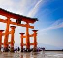 世界遺産「厳島神社」の大鳥居が倒壊危機 柱の割れ目にコインを挟み込まれるため