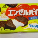 『エンゼルパイ バニラ 森永製菓』の画像