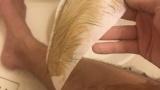 ブラジリアンワックスで体毛を剥がしとるんやが痛えええ(※画像あり)