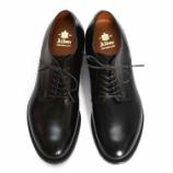 『[Today's Shoes♂] Alden #53507 Plain toe』の画像