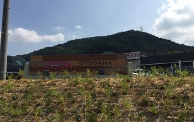 『グランドオープン(=゚ω゚)人(゚ω゚=)ぃょぅ!』の画像