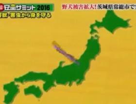 フジテレビ、日本列島を不自然に改ざんしてテレビで放送し多数の非難を浴びる