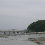 『潮干狩り@竹島海岸』の画像