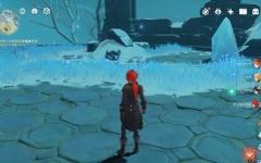 【原神】ドラスパの秘境クエストで雪王チャールが守ってた石復活しなくて詰んだんだが