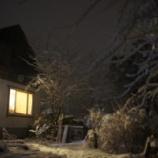 『雪の夜』の画像