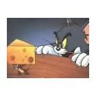 『窮鼠猫を噛む?・・・』の画像
