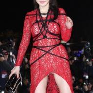 ハンセアという韓国女優がパンツ丸出し自分を縛った卑猥セクシー衣装で第51回大鐘賞映画祭に登場しエロすぎると話題にw【画像あり】 アイドルファンマスター