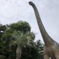 2010年3月5日、「恐竜絶滅の原因は小惑星の衝突」