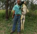 テキサスで超大型カエルが捕獲される このカエルで真偽の論争まで 「無残に殺すな」と批判も殺到