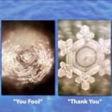 『2020.8.2 澤江 昌範氏特集 -〜「 ありがとう!」「 ばかやろう!」で水の中のカルシウム濃度が変わる〜』の画像