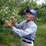 『社長が青森の木村さんのりんご畑に行ってきました』の画像