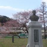 『お花見!2010』の画像
