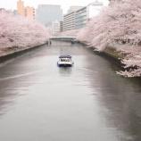 『春のうららの~』の画像
