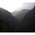 『生息地探訪』の画像