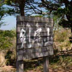 春の剣尾山・横尾山登山
