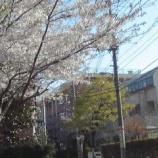 『今日は戸田市内の小中学校で入学式が開催されます』の画像
