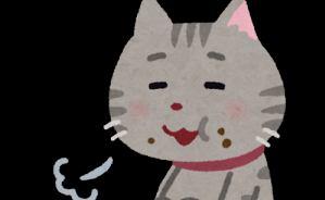 会話しながらご飯を食べる子猫たち