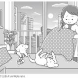 『【お仕事】でっかい!まちがいさがし3月号(コスミック出版)』の画像