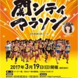 『3月19日(日)は関シティマラソン!セキビズへお越しの相談者さんも多く参加されます。』の画像