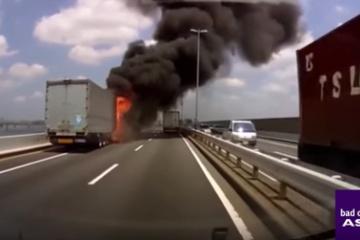 【??!】日本の道路で起きる『○○○○』の映像が外国人にひそかに人気になっていた