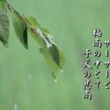 『干天の慈雨』の画像
