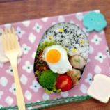 『ナムプリック(タイのチリペースト)野菜炒めのお弁当』の画像