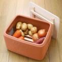 冷蔵庫を使わず根菜をいきいきとした状態で保存できま…