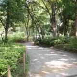 新宿中央公園のサムネイル