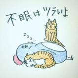 『🛌不眠はツラいよ🛌』の画像