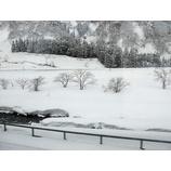 『(新潟)雪に埋もれる』の画像