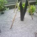 モクレン手入れと手作り家具その2と防草シート&砂利敷き