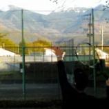 『茅野に移転後、初のテニス。』の画像
