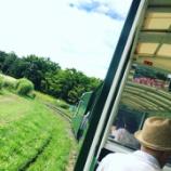 『おひとりさまの夏休み〜ロイズのパン→巨大ズッキーニ→百合が原公園』の画像