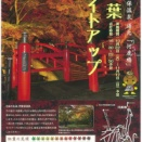 '19伊香保温泉 湯元「河鹿橋」紅葉ライトアップ