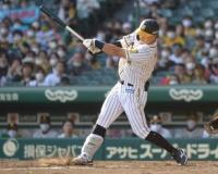 【朗報】阪神、世界記録まであと3
