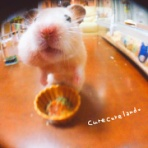 🍎 Cure Cure* Land 🐹🍀